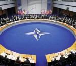 Где у НАТО мозг